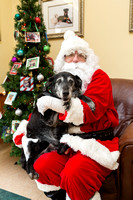 Companion Animal Clinic | Pets for Santa